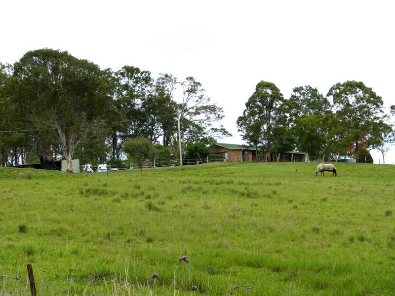 5256 Bucketts Way, Burrell Creek, NSW 2429