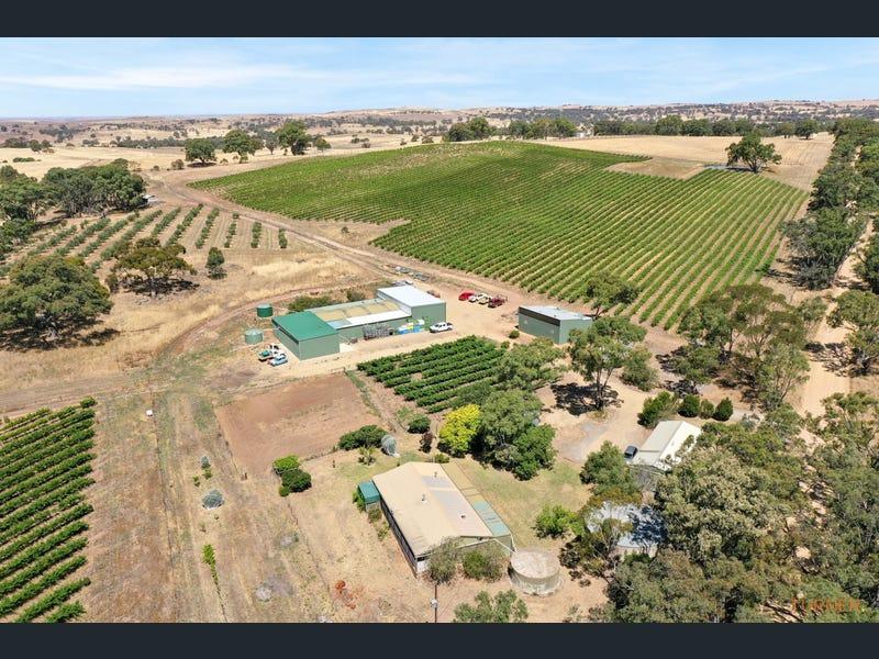 82 Koop Creek Road (Springton Hills Wines), Springton, SA 5235