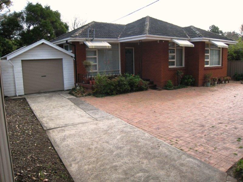 3A Pine Avenue, Earlwood, NSW 2206