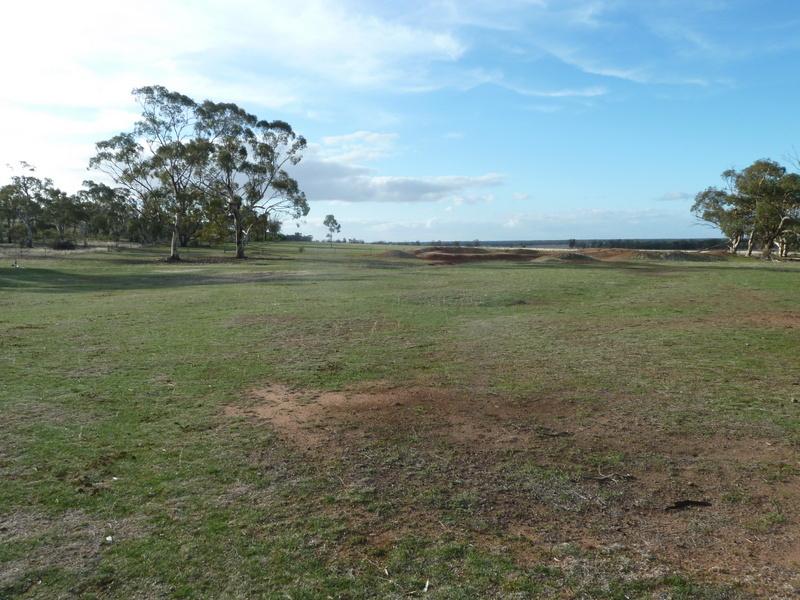 11 Golf Park Drive, Charlton, Vic 3525
