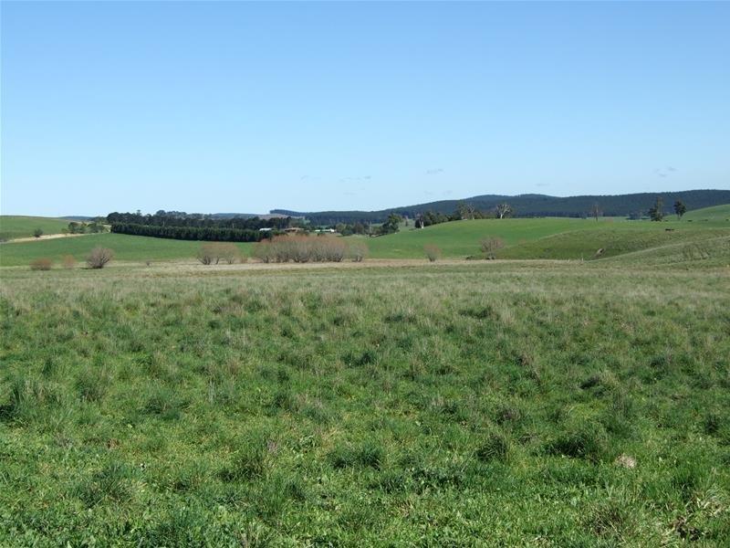310 Sewells Creek Road, Oberon, NSW 2787