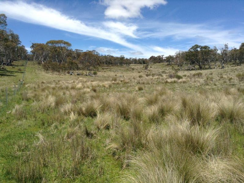 Lot 1  Wainui Rd,, Eucumbene, NSW 2628