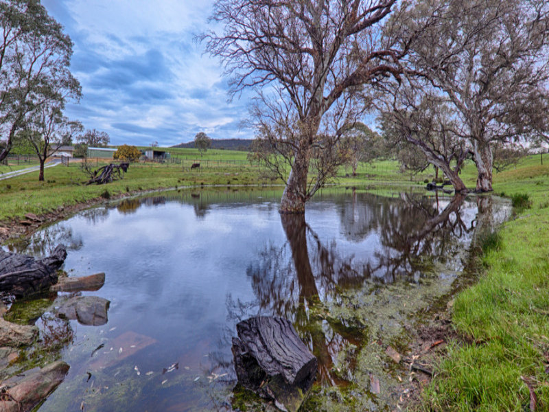 158 Cattle Route Road, Mount Barker, SA 5251