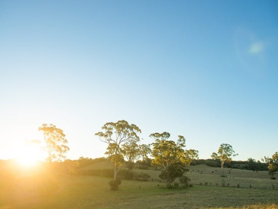 Lot 944, Thoroughbred Drive, Cobbitty, NSW 2570
