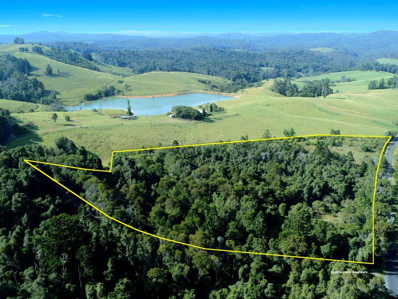 1043 Coramba Road, Dorrigo, NSW 2453