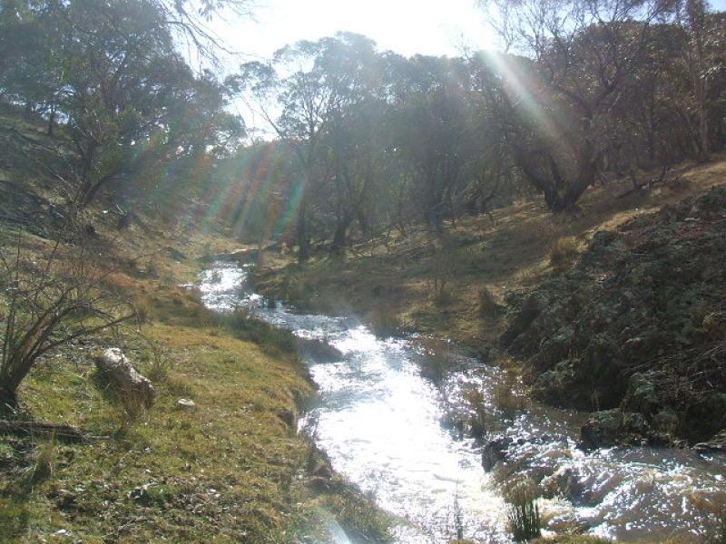 Lot 136 Pipeclay Creek, Eucumbene, NSW 2628