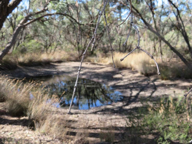 Lot 23 Wallaby Way, Wedderburn, Vic 3518