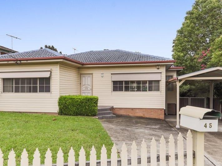 45 Mount Street, Wentworthville, NSW 2145