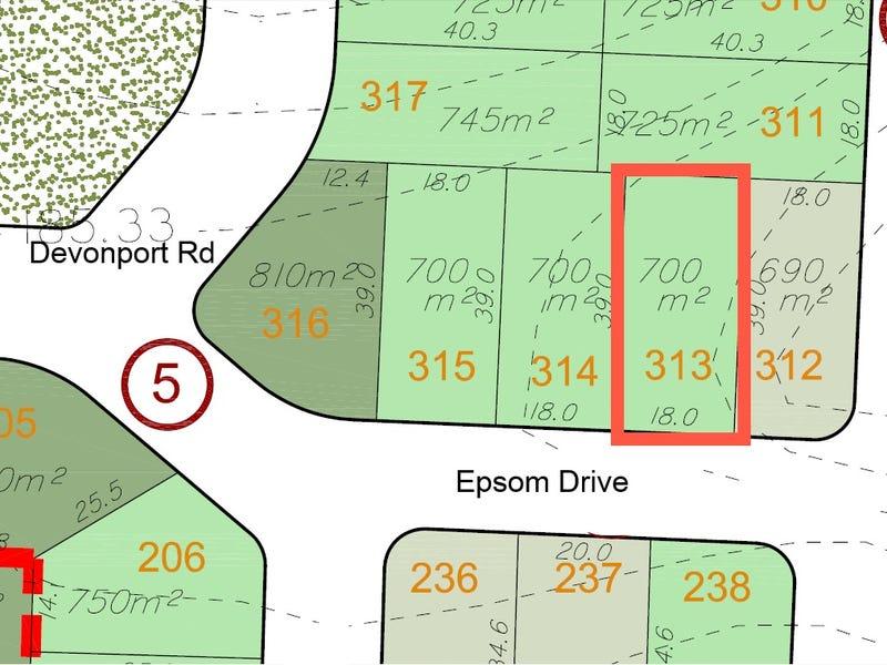 Lot 313 Epsom Street, Emerald