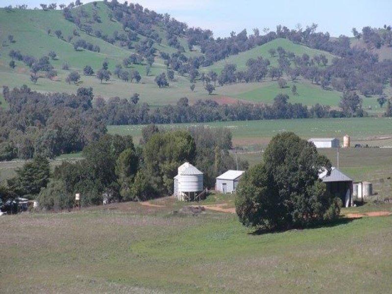 Lautoka Finlay's Lane, Muttama, NSW 2722