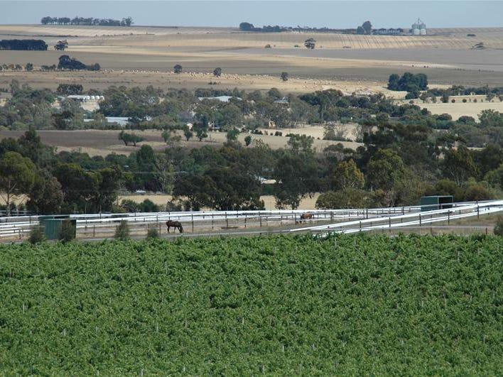 122 Rosedale Scenic Road, Rosedale, SA 5350