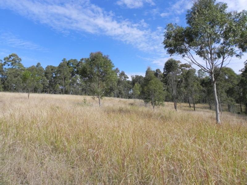 650 Bostock Road, Tucabia, NSW 2462