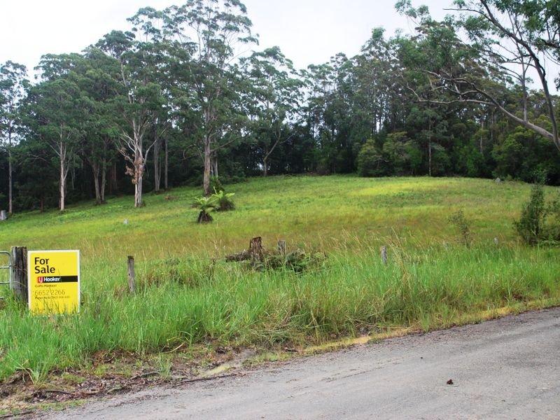 Lot 442/361 Gundarene Road, Lowanna, NSW 2450