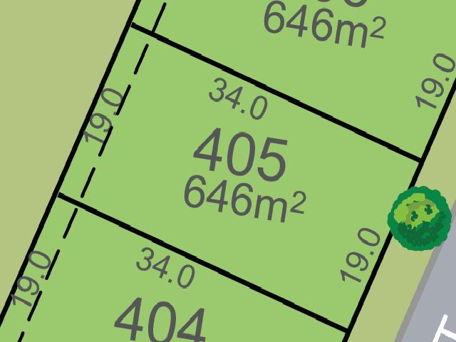 Lot 405, Harvest Boulevard, Chisholm, NSW 2322