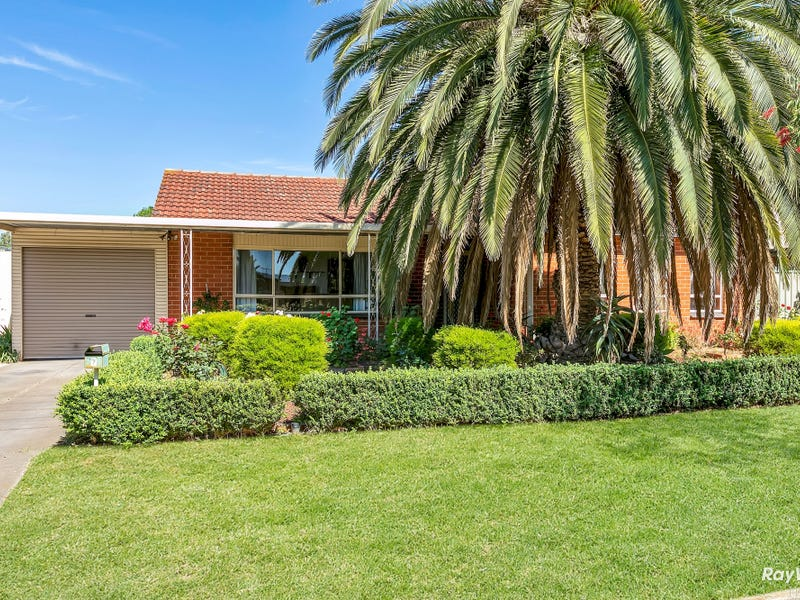 7 Mercedes Drive, Holden Hill, SA 5088