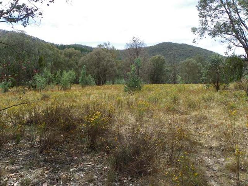 150 Ferndale Road, Woomargama, NSW 2644