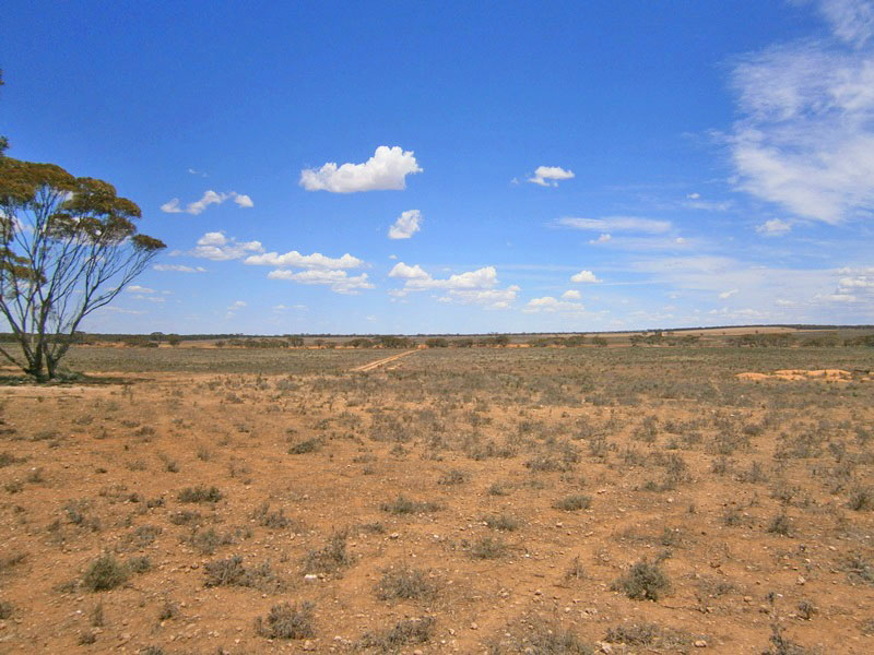 Lot 2 Angle Road, Sutherlands, SA 5374