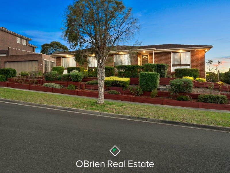 14 Sydney Parkinson Avenue, Endeavour Hills, Vic 3802