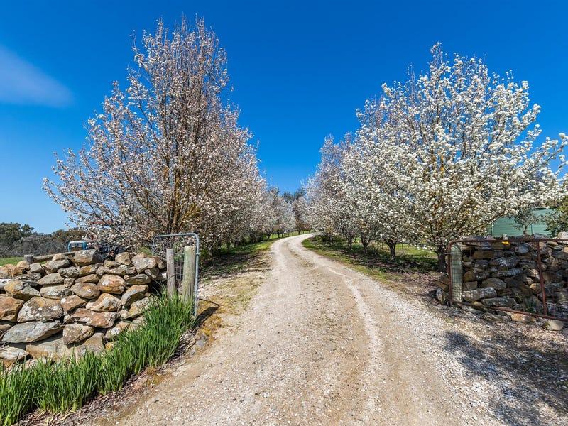 83 Sugar Loaf Hill Road, Mount Mckenzie, SA 5353
