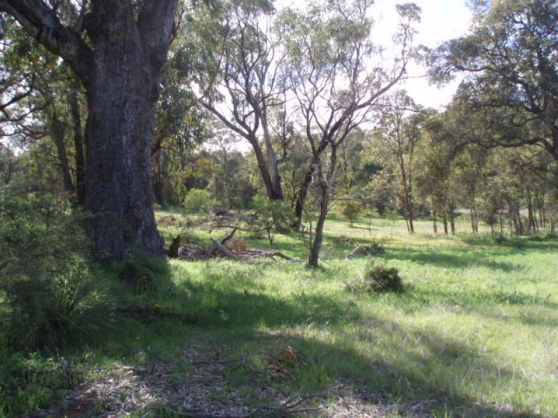 Address available on request, Carabooda, WA 6033