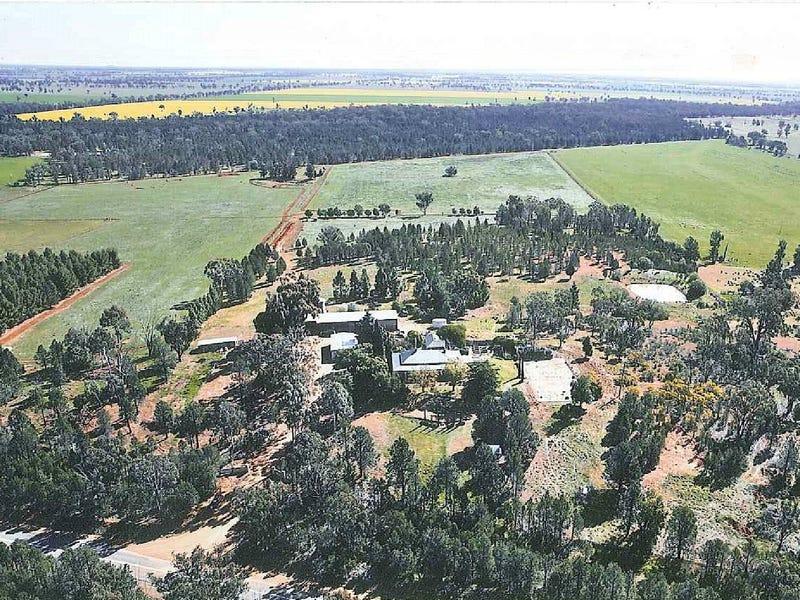 119 Rannock Road, Coolamon, NSW 2701