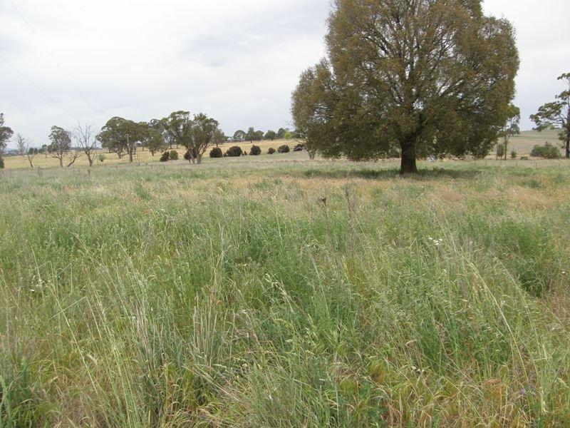 821 Scenic Drive, Manildra, NSW 2865