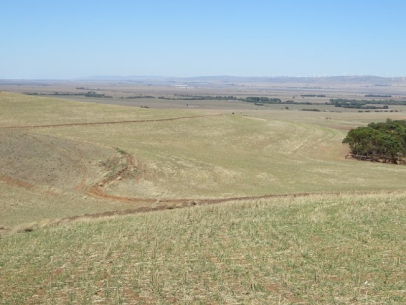 Sec 223 Behenna's Track, Koolunga, SA 5464