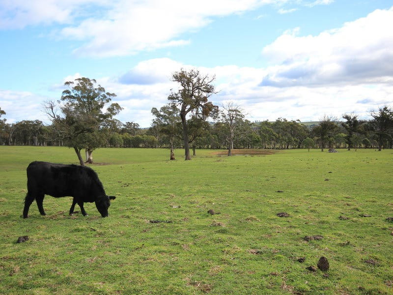 Lot 1 Old Mandemar Road, Berrima, NSW 2577