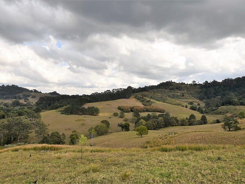 537 Tuntable Creek Road, Tuntable Creek, NSW 2480