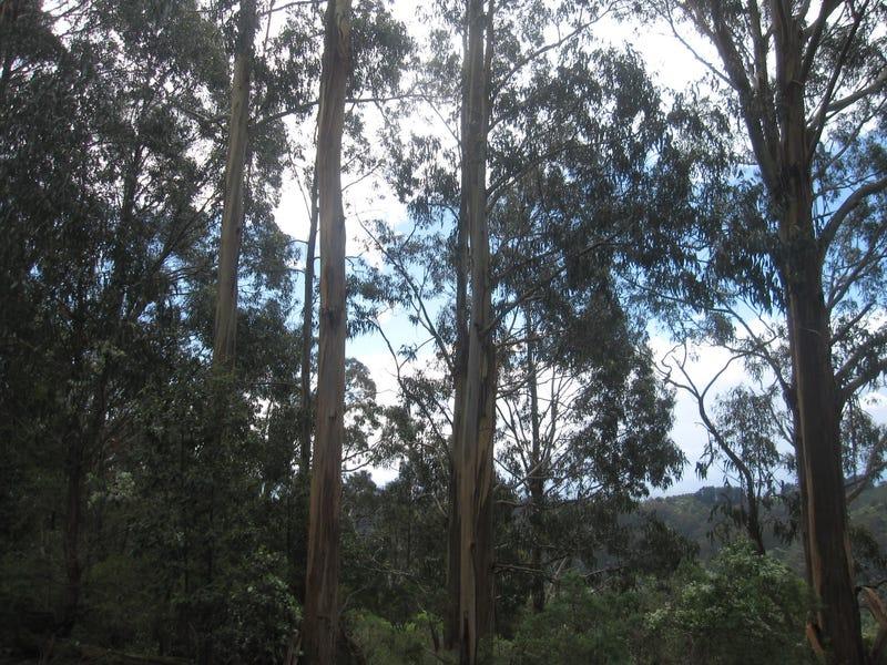 50 Reidy's Road, Jeeralang Junction, Vic 3840