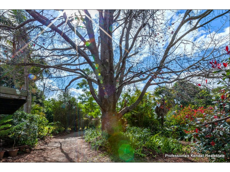 19 Licuala Drive, Tamborine Mountain, Qld 4272