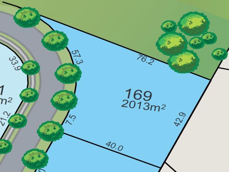 Lot 169, SEASONS CIRCUIT, Chisholm, NSW 2322