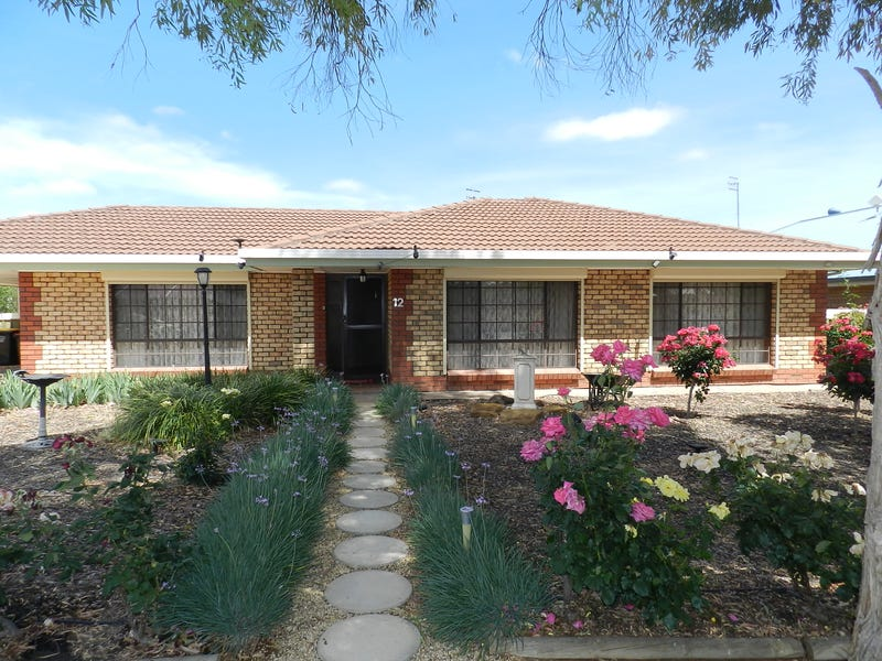 12 Beames Road, Via Berri, Lyrup, SA 5343
