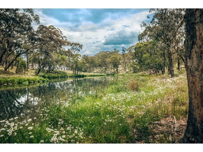 15 major Street, Ebor, NSW 2453