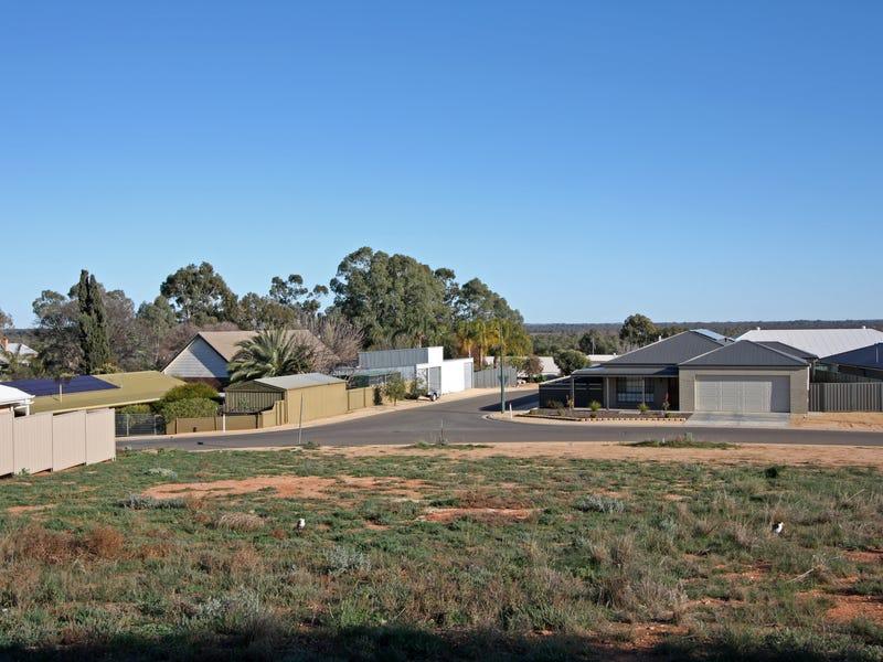 Lot 1 McEwen Drive, Loxton, SA 5333