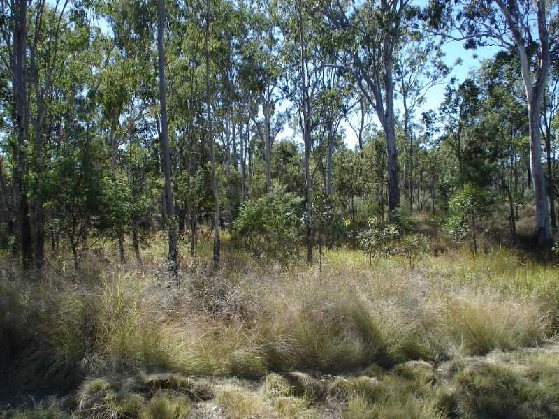 lot51 Raymond Road, Tarong, Qld 4615