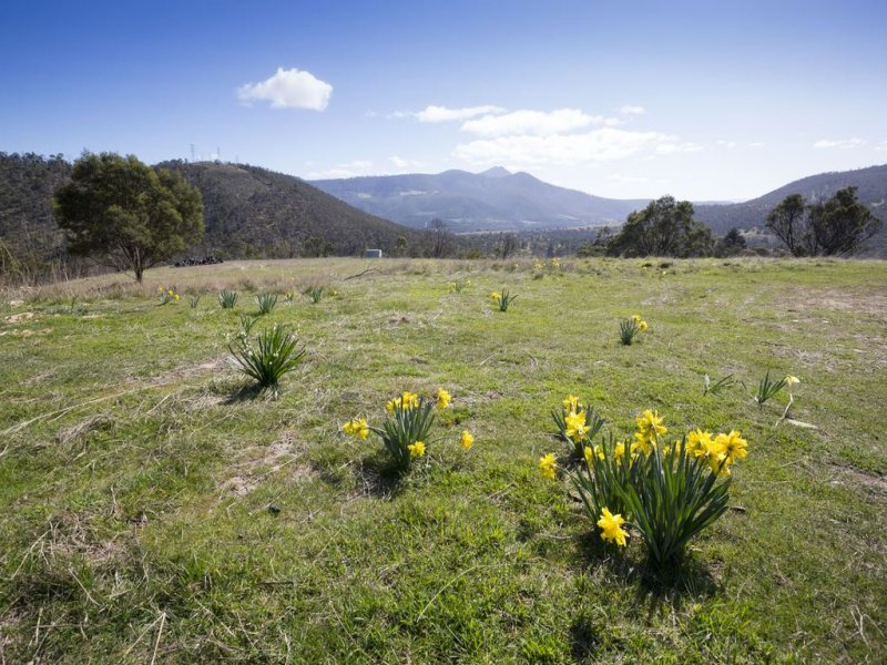 77 Glen Dhu Road, Molesworth, Tas 7140