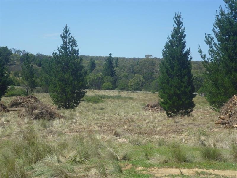 Lot 3 & 4 Tall Pines Est, Nerriga, NSW 2622