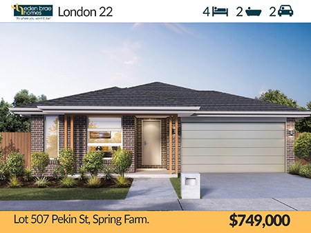 Lot 507 Pekin Street, Spring Farm, NSW 2570