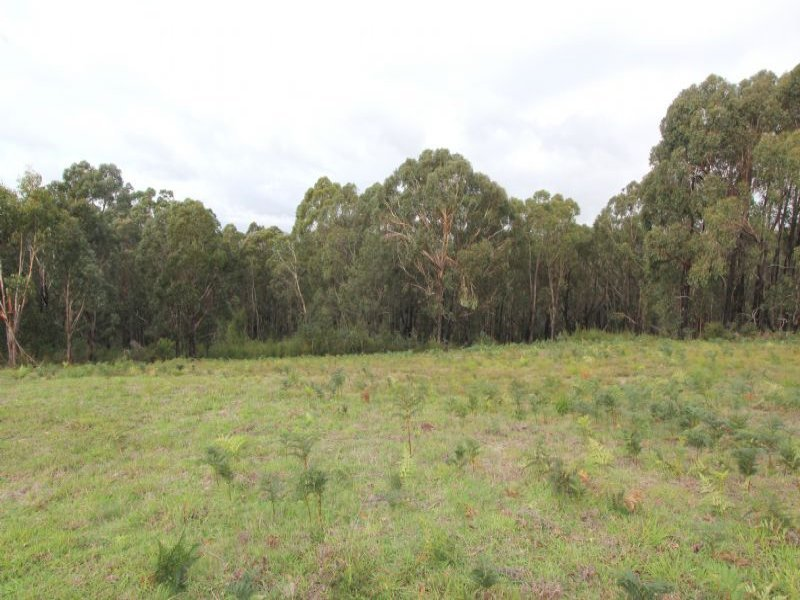 8 Gilfedder Terrace, Mirboo North, Vic 3871