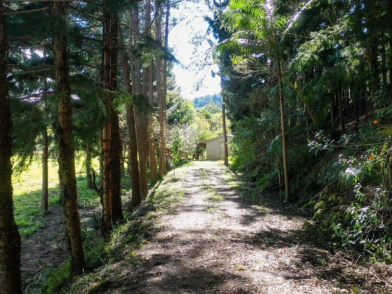 364 Dairyville Road, Upper Orara, NSW 2450