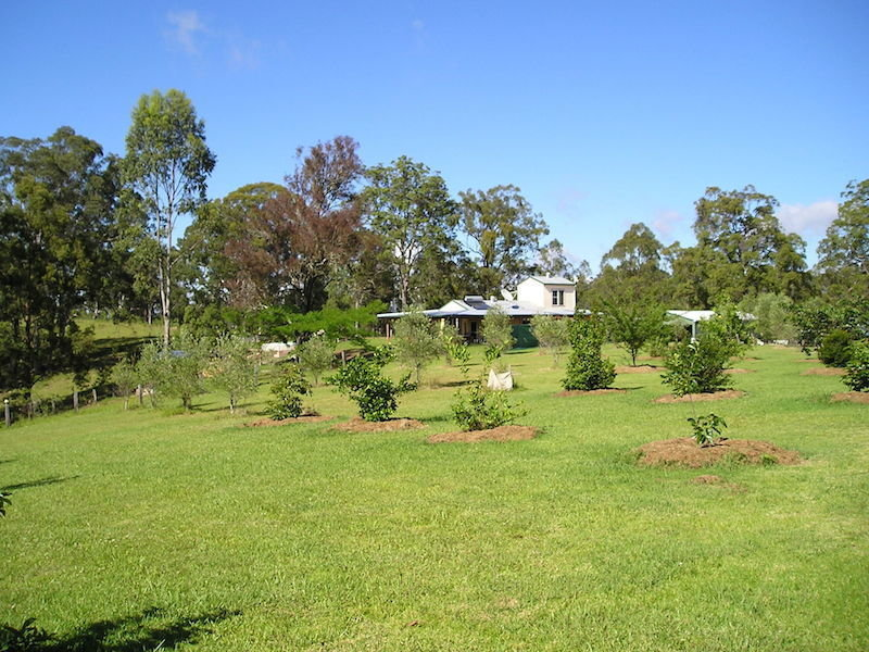 Address available on request, Homeleigh, NSW 2474