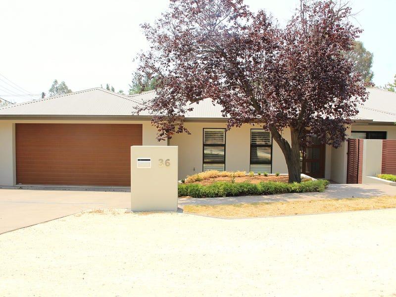 36 Robertson Street, Curtin, ACT 2605