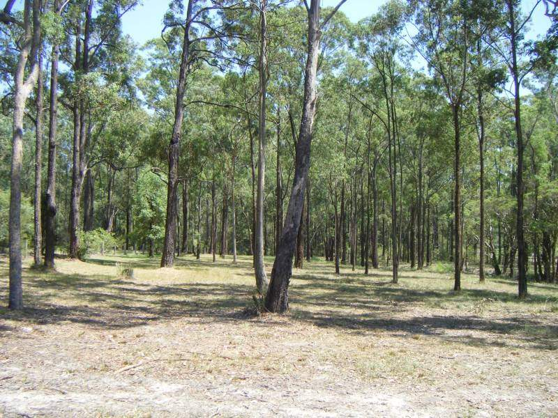 33 Timbertop Road, Glen Oak, NSW 2320