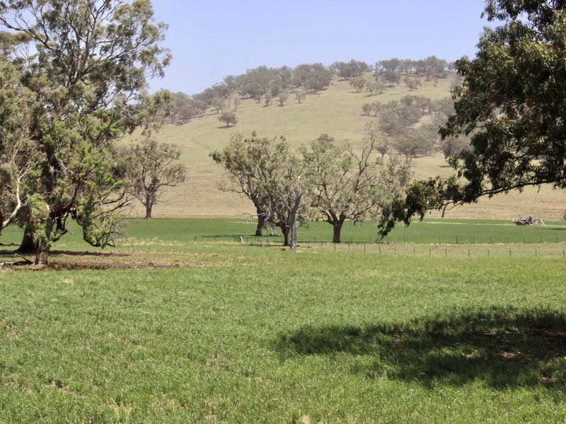 1142 Warrah Creek Road, Warrah Creek, NSW 2339