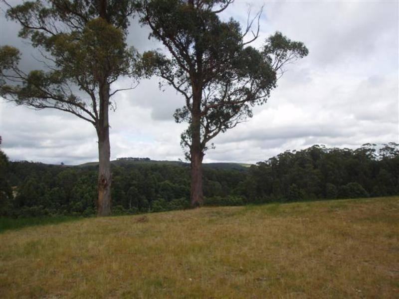 Lot 5 Hilders Road, Irishtown, Tas 7330