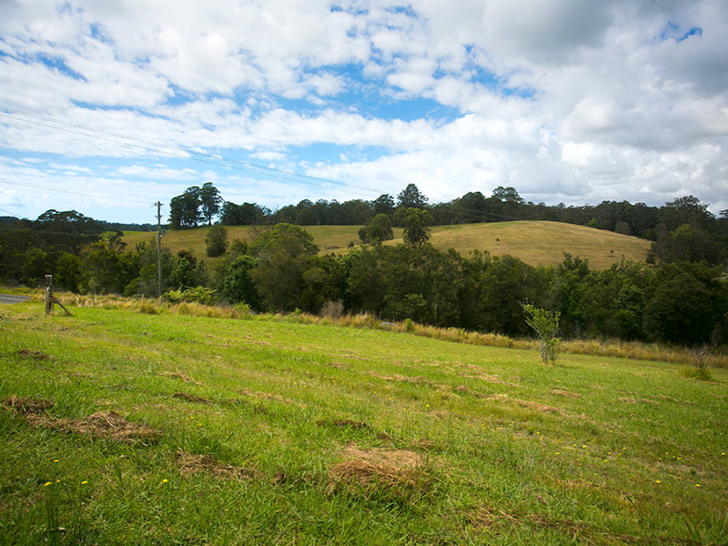 Lot 571 Wirrimbi Road, Newee Creek, NSW 2447