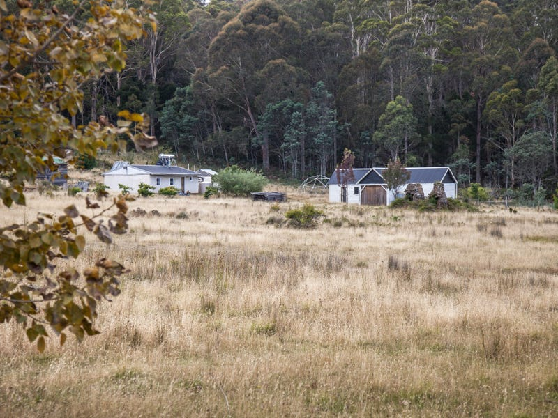 689 Sawpit Hill Road, Blessington, Tas 7212