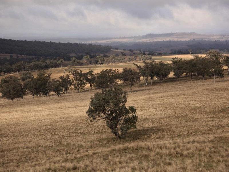 8717 Golden Highway, Borambil, NSW 2329