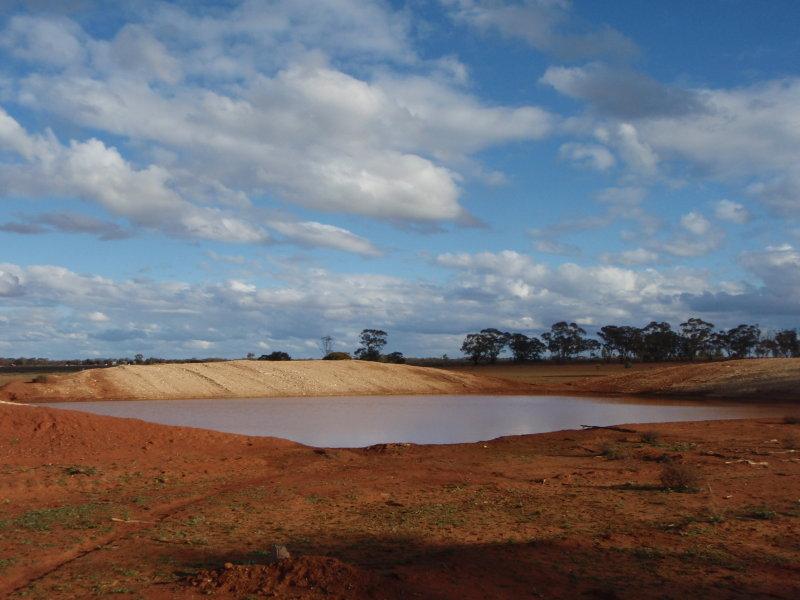 Dalrengi, Condobolin, NSW 2877